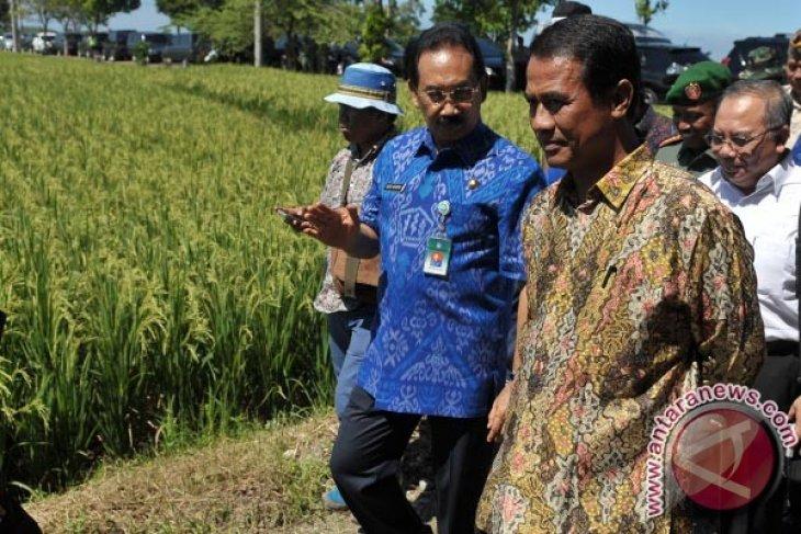 Dispar Badung Tunggu Produk Distan untuk Kembangkan Agrowisata