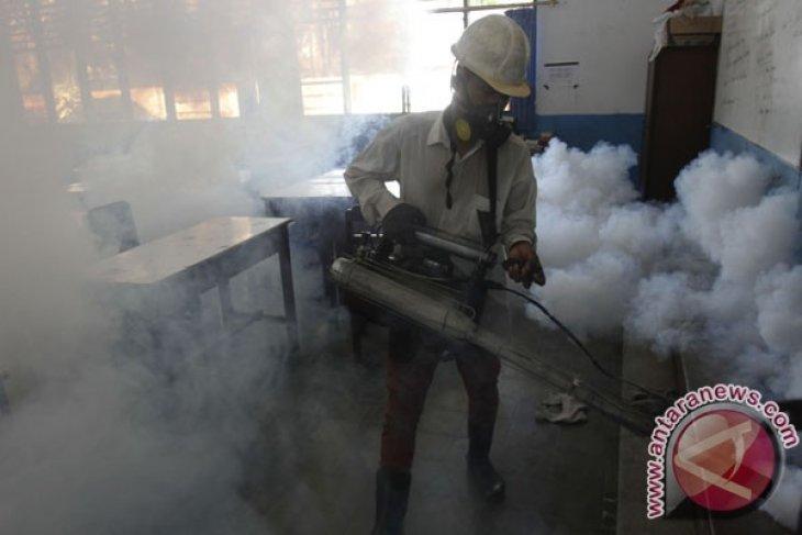 Toddler dies of dengue in C. Sulawesi