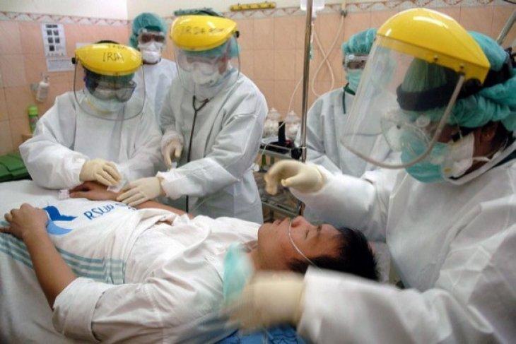 Flu Babi Tewaskan 800 Lebih Orang di India Sejak 2015