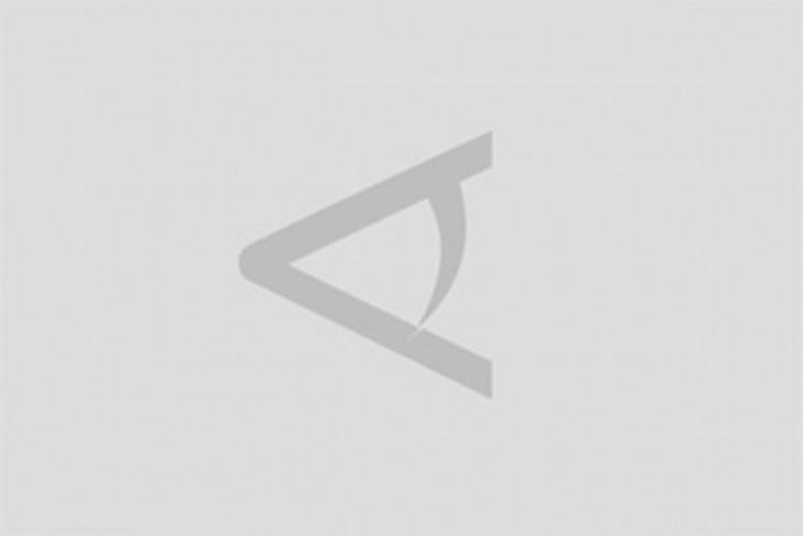 Hiu Paus Terjebak di Kanal PLTU Mati