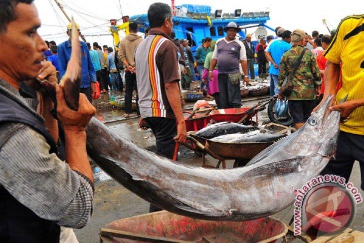 Do not overlook small-scale fisheries actors: Kiara