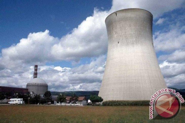 Pakar: Indonesia Belum Butuhkan Listrik Tenaga Nuklir