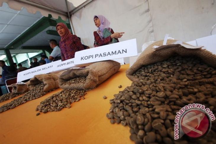 West Pasaman holds Mount Talamau coffee festival