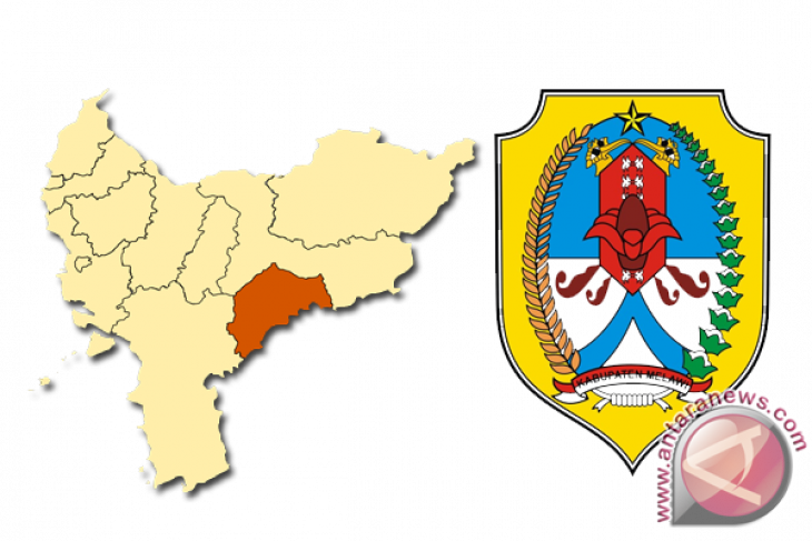 Ketua KNPI Kalbar Lantik Kepengurusan KNPI Melawi