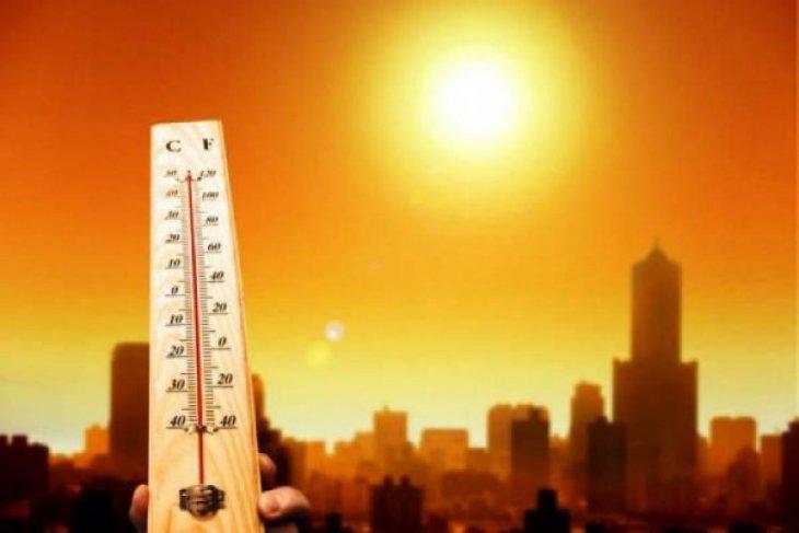 Konferensi Internasional Perubahan Iklim Di Jerman