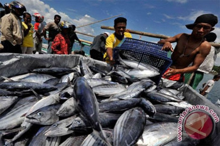 Target Produksi Ikan Tangkap Karawang Sulit Tercapai