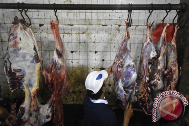 Jawa Timur Kekurangan Daging Sapi