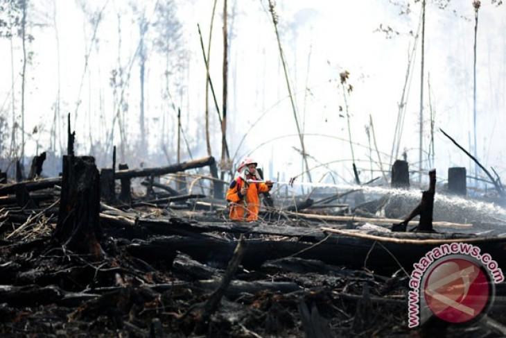 Pemkab Kayong Utara petakan kerawanan Karhutla
