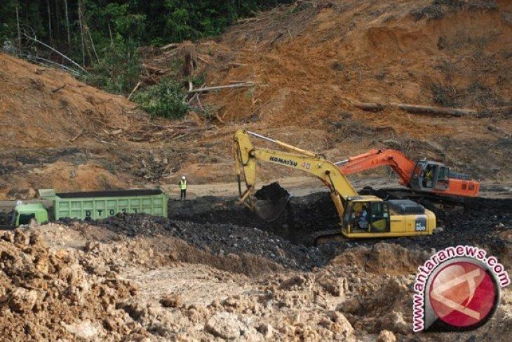 Walhi Bengkulu sebut ada indikasi korupsi di tambang batu bara