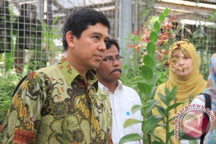 Kebun Raya Bogor Rawat Anggrek Iriana Jokowi