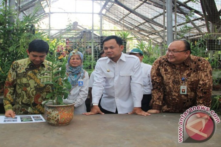 KRB Bentuk Tim Rawat Anggrek Iriana Jokowi