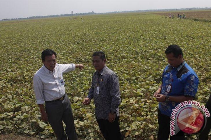 Kudus just suffers water shortage: Kudus regent