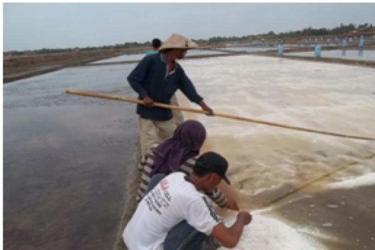 Ini sebab harga garam petani di Karawang melonjak