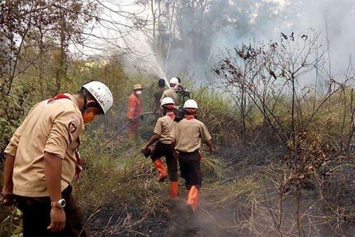 Pembakar hutan di masa pandemi dipastikan dihukum berat