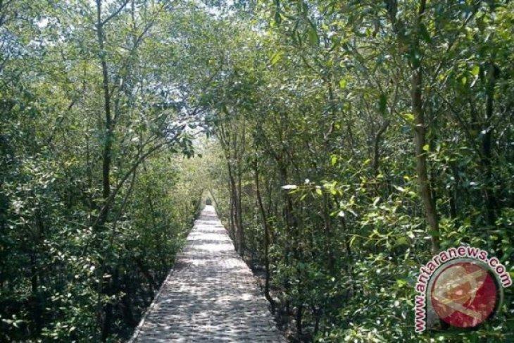 Mengalihfungsikan Taman Jadi Hutan Kota Surabaya