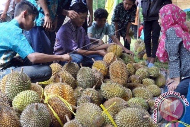 Begini cara Probolinggo gelar festival durian