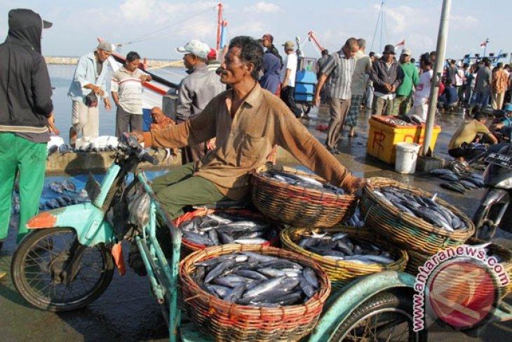Menteri Kelautan dorong ekspor ikan dapat langsung dari Aceh