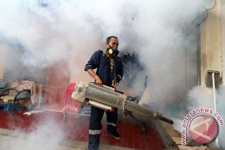 Dengue cases reported in Pekanbaru