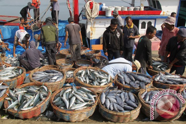 Indonesian govt sets investment target of Rp15 trillion in fisheries sector