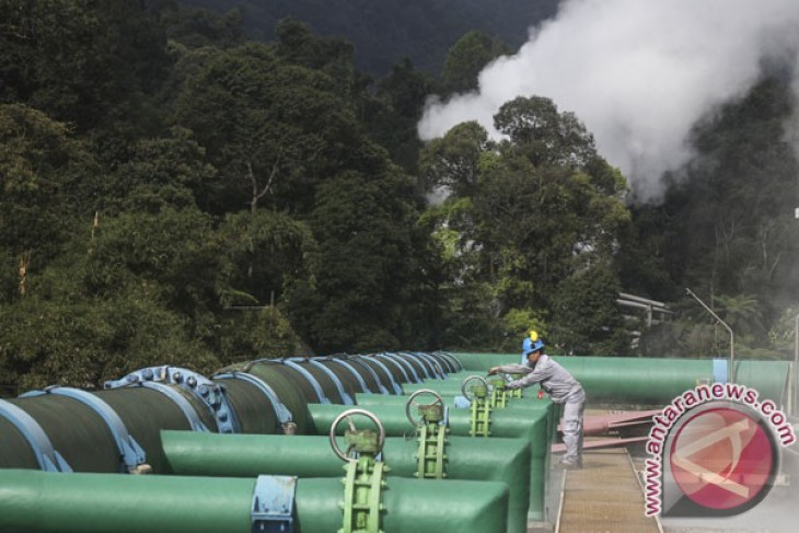EARTH WIRE -- WWF, Arun to develop geothermal energy in Flores