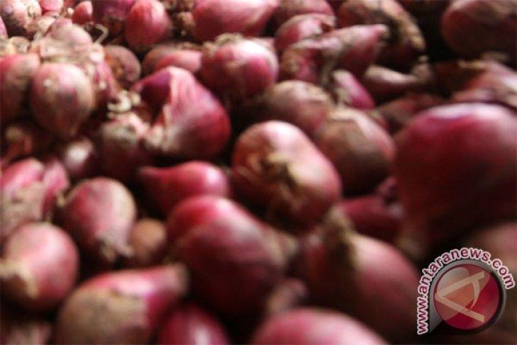 Terapi bawang dapat sembuhkan kanker? Ini faktanya