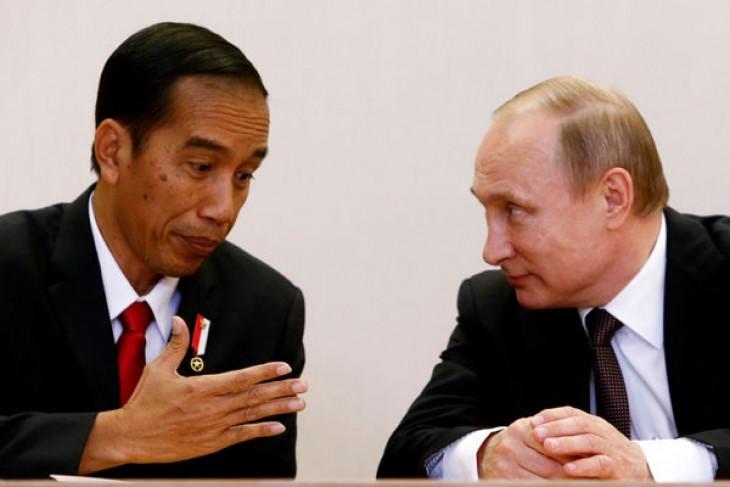 Jokowi, Putin deliberate on increasing palm oil exports to Russia