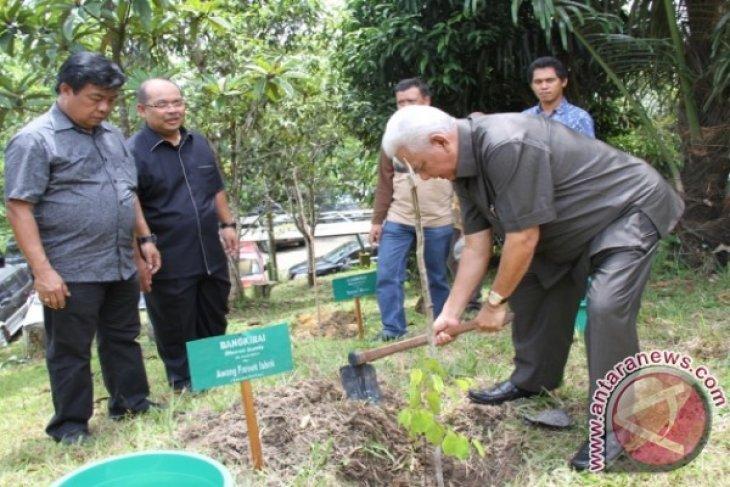 Program Kaltim Hijau Tanam 315.981.926 Pohon