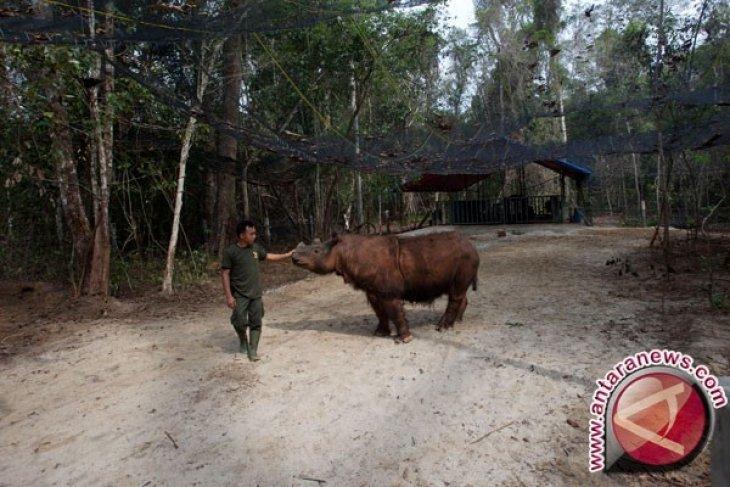 Way Kambas Resmi Menjadi Taman Warisan ASEAN