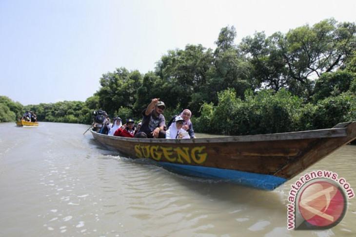 Kendari has attractive mangrove ecotourism areas