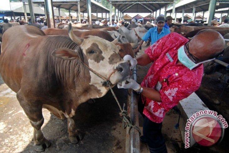 Anggota DPR Minta Pemda Maksimalkan Pengecekan Hewan