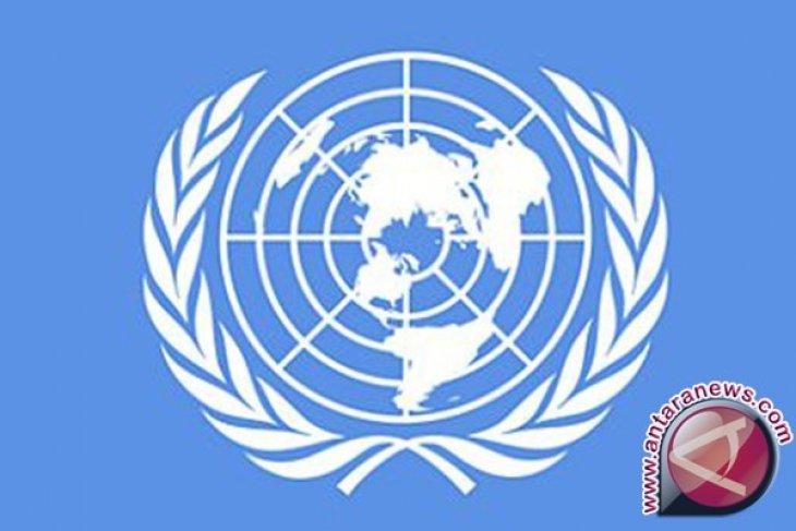 PBB: wabah kolera menyebar cepat di tenda pengungsian Nigeria