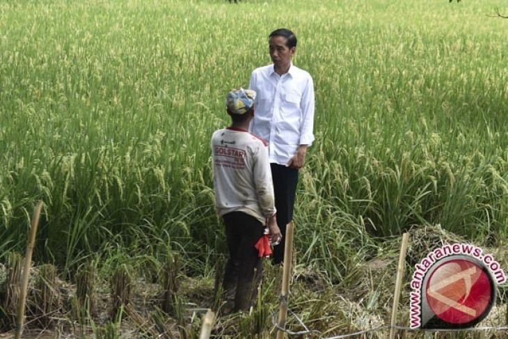President Jokowi leaves for Boyolali to commemorate World Food Day