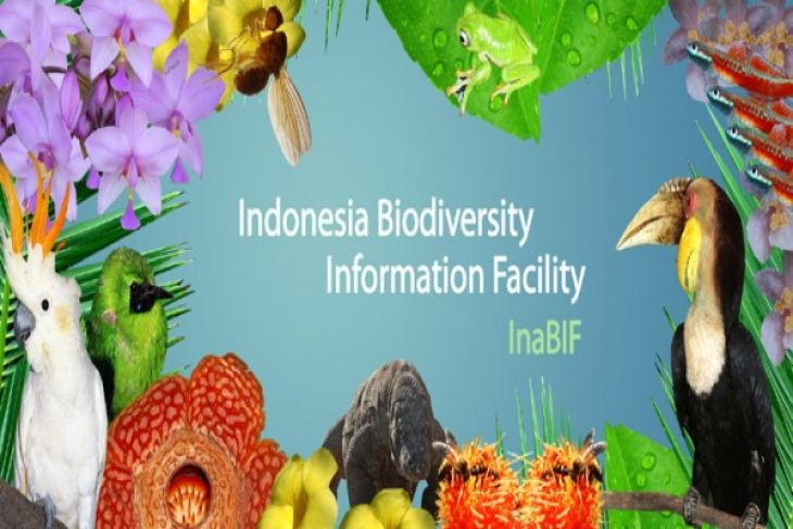 EARTH WIRE -- LIPI launches Indonesia biodiversity application