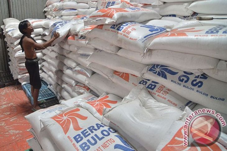 Bulog to buy rice from farmers in C. Sulawesi