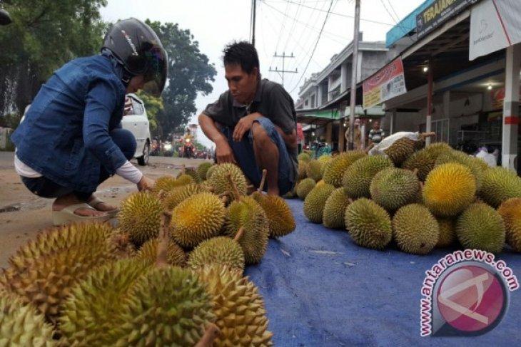 Satpol PP tertibkan pedagang durian pemicu kemacetan