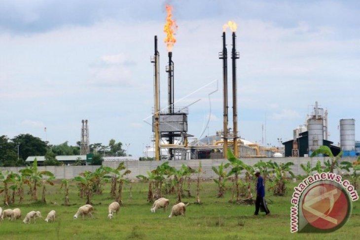 Harga minyak dunia naik pada akhir perdagangan