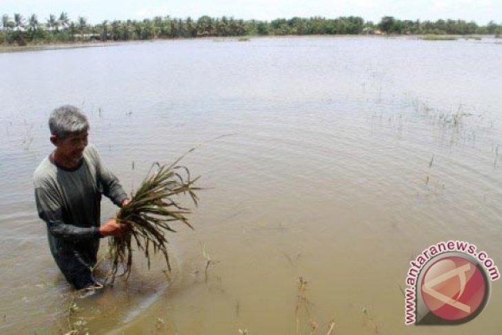 Embung Panjang Solusi Atasi Banjir