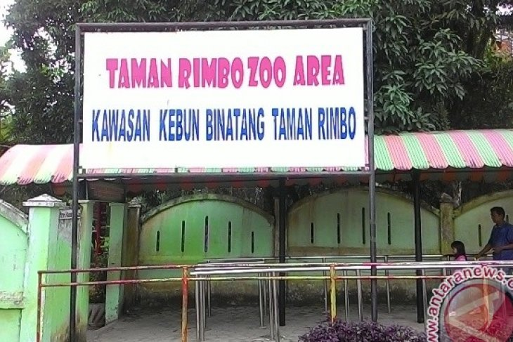 Ribuan pengunjung padati Taman Rimba Jambi