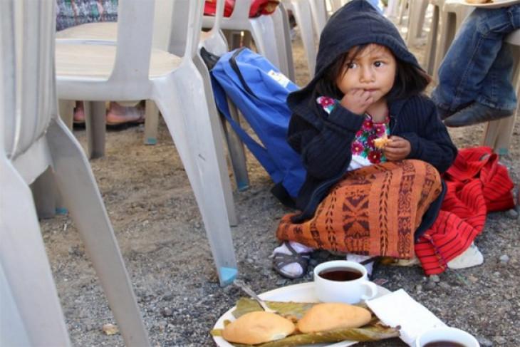 Undernutrition, obesity cost Latin America billions of dollars: UN