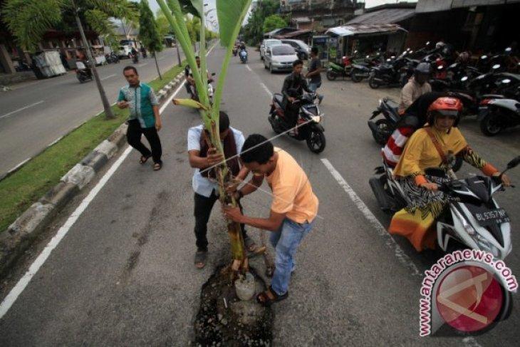 Tanam Batang Pisang di Lubang Jalan
