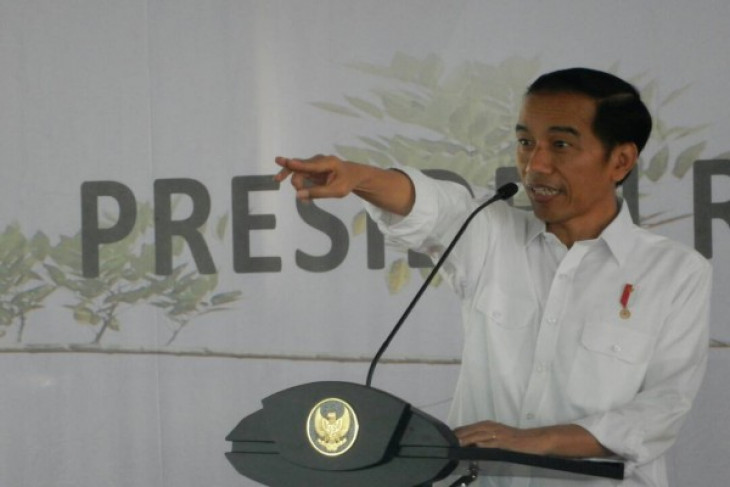President Jokowi urges society to maintain unity in diversity