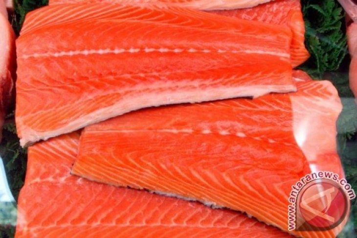 Salmon Norwegia bukan sumber virus corona di Beijing