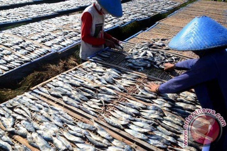 Pengolahan ikan asin keluhkan tingginya harga garam