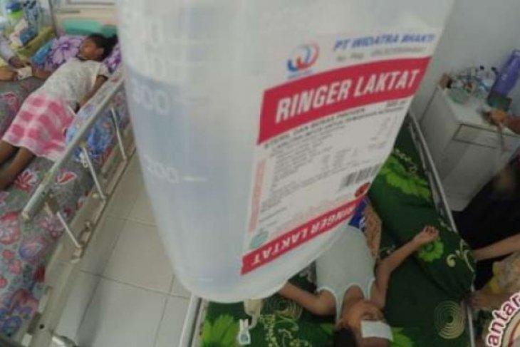 Lima penderita DBD di Kota Pekanbaru meninggal dunia sepanjang 2019