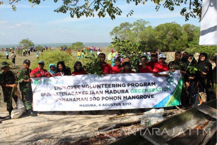 BPJS Ketenagakerjaan Tanam Pohon Mangrove Cegah Abrasi