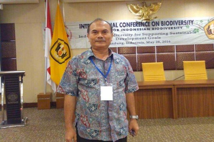 Guru Besar IPB: Dalam RTRWP Minimal 30 Persen Harus Hutan