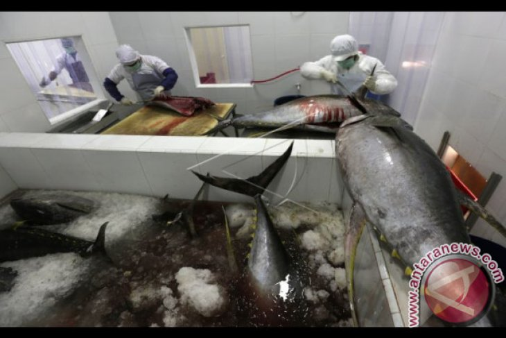 Dinas Kelautan Harapkan Kosumsi Ikan Masyarakat Meningkat
