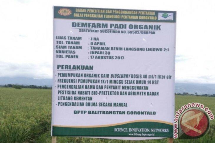 BPTP Gorontalo Lakukan Pendampingan Produksi Beras Organik