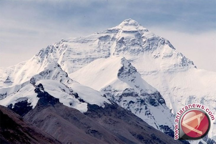 Tim SAR kerahkan helikopter evakuasi pendaki puncak Cartenz