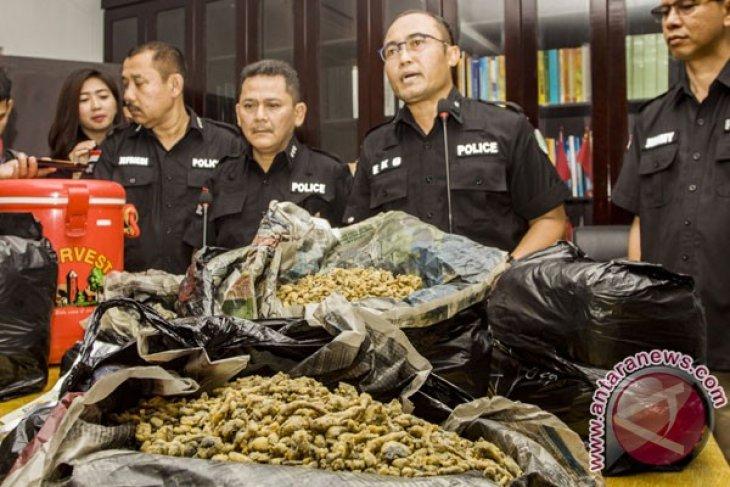 BNNP Bali cegah narkotika jenis